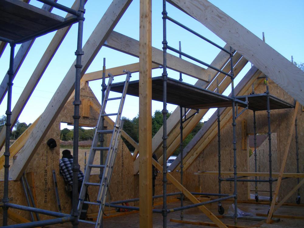 roof_2.thumb.jpg.332d0dcac223f6f563ce134aedc9a26d.jpg