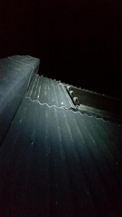 1381603781_20191023-RoofDetails(8).thumb.jpg.f55eea0200b578eddca755fbbbdfdd22.jpg