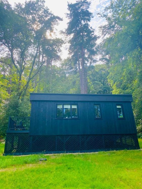 stealth shed.jpg
